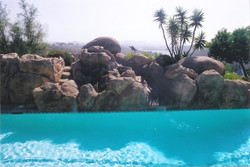 swimming-pools-fish-ponds-49