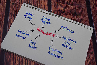 Resilience Method text with keywords iso