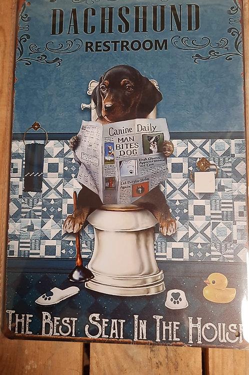 Teckel Dachshund Puppy on toilet  KE019