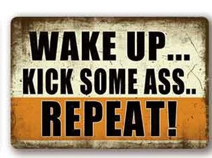 Wake up kick some ass  TH8816