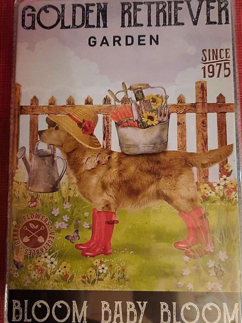 Golden Retriever in de tuin  WW021