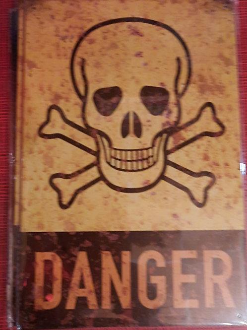 Danger Skull  WW012