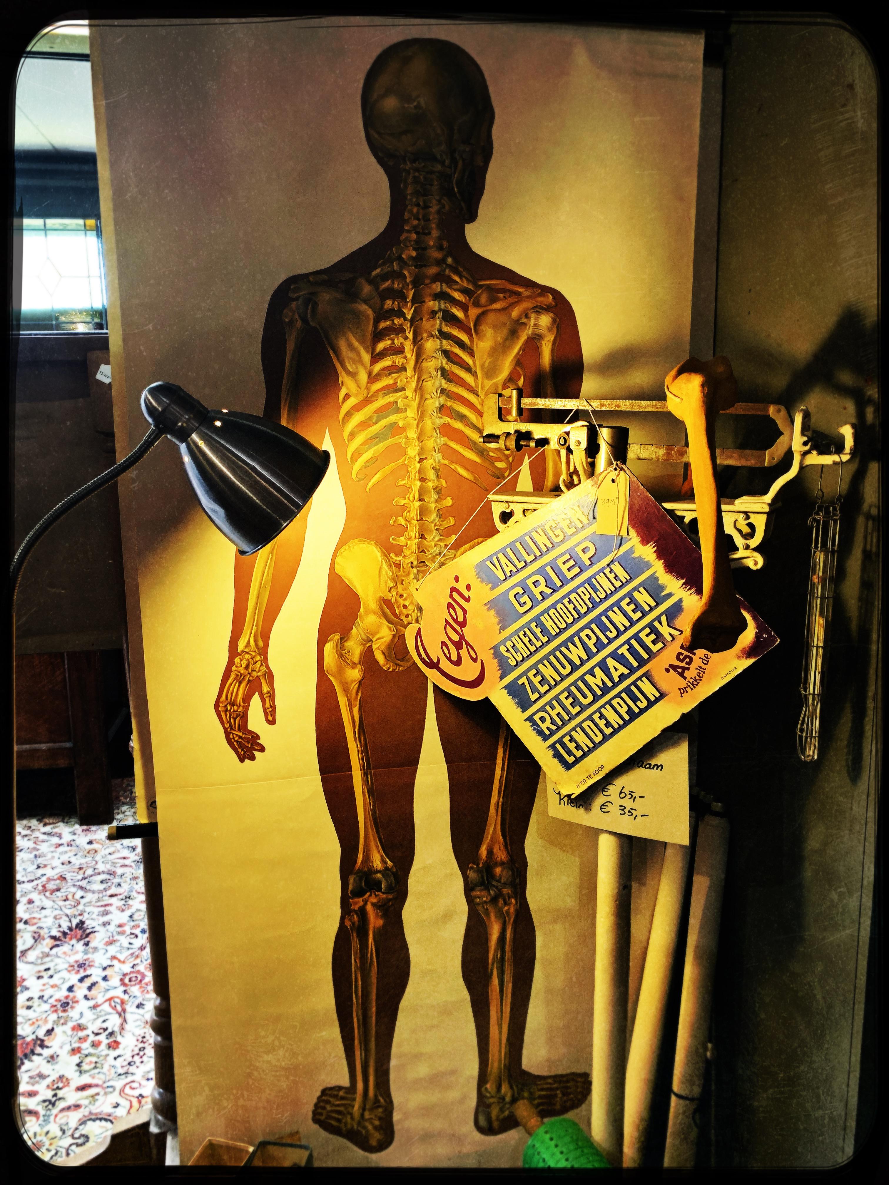 vintage skelet poster