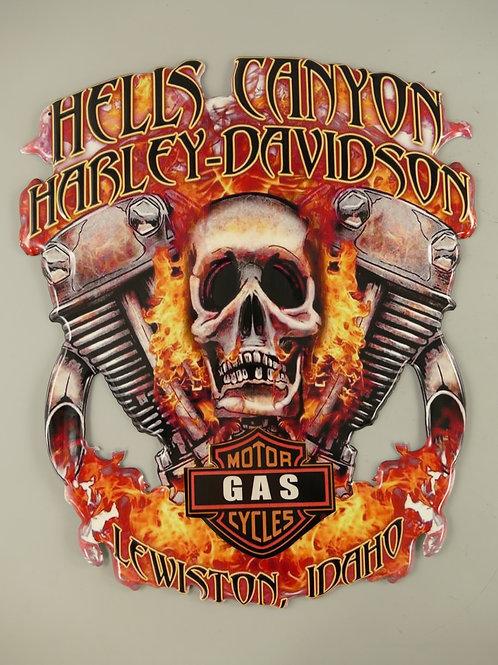 Harley Davidson  Hells Canyon  321.Y61