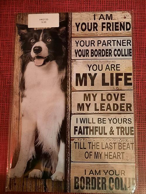 Border Collie I am your friend HK0135