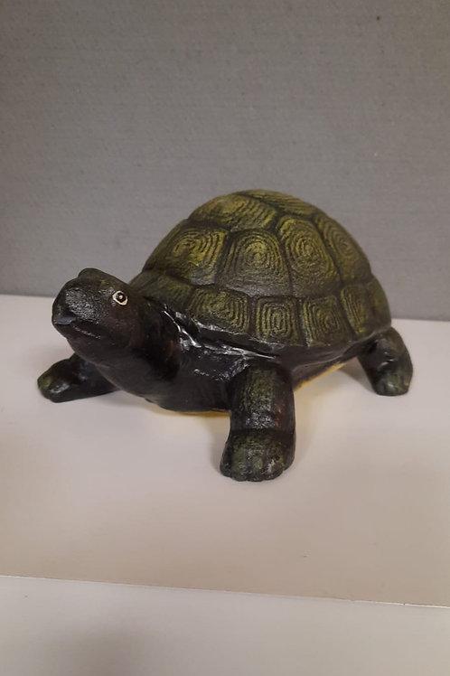 Gietijzeren schildpad NH-24