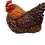 Thumbnail: Liggende bruine kip 37000155B  binnenkort leverbaar