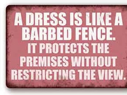 a Dress is like a barbed Fence  TH8834