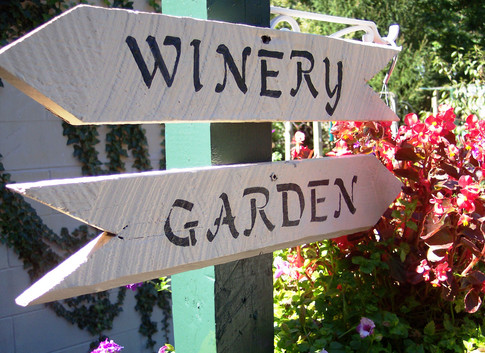 cu summer arrow sign libary.JPG