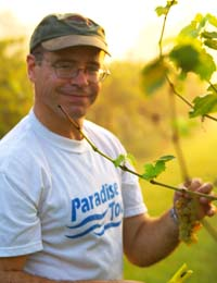 Chris Lanthier picking grapes