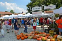 Harvest pumpkin shoppers.JPG