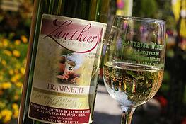 traminette fall bottle and glass.JPG