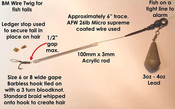 BM Wire Twig_2.jpg