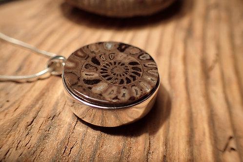 Ammonite and Jet Pendant
