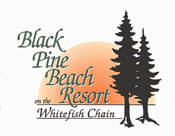 BPBR Logo color-1.jpg