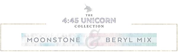 4-45 Unicorn Banner-01.png