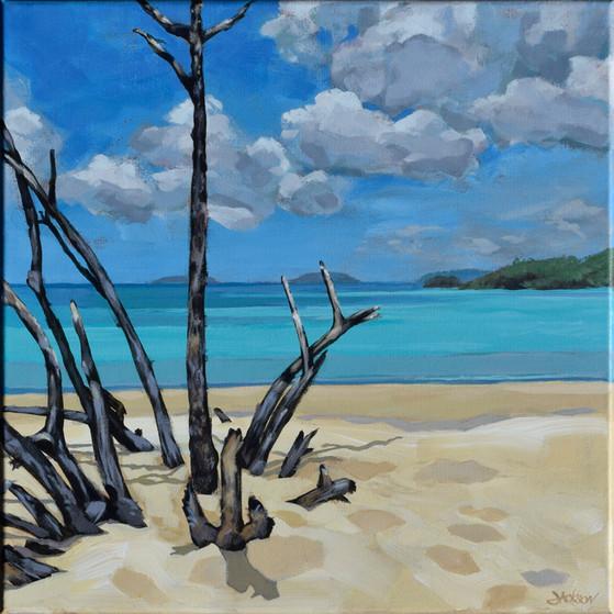 Sky, Sand, Sea, Wood