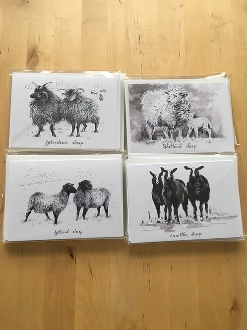 Lot de 4 cartes mouton