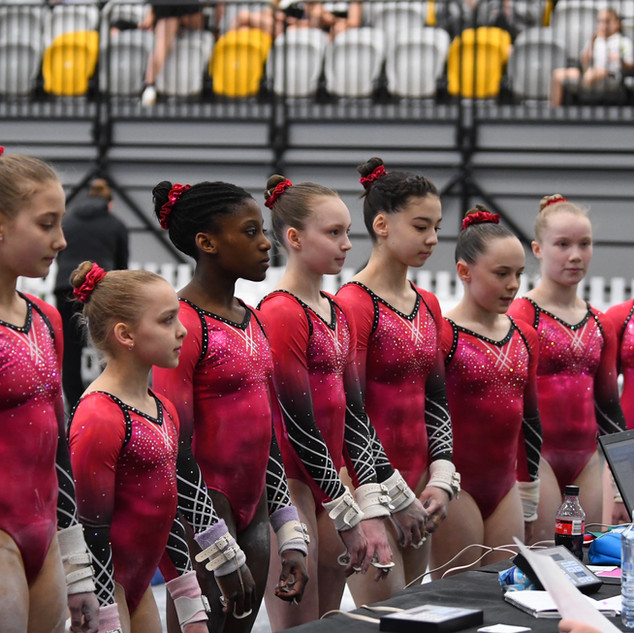 468552-Q1.GA_Nationals_Gymnast_Download.