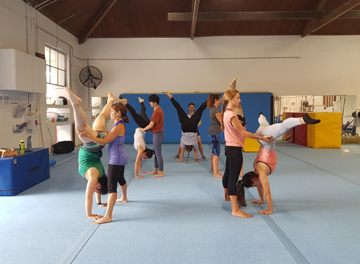 Flexibility and Handstands: introducing our new Adults classes