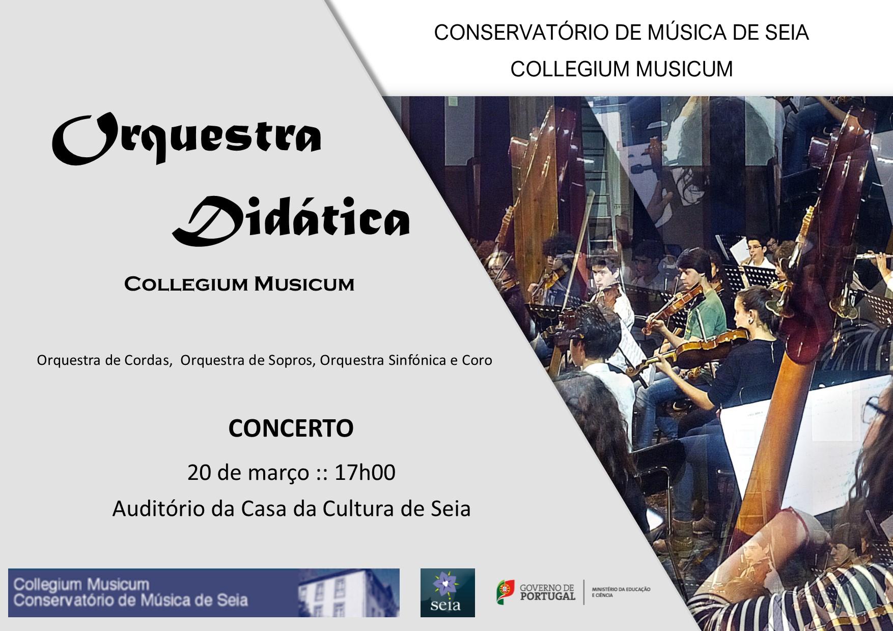 Concerto Orquestra Didática