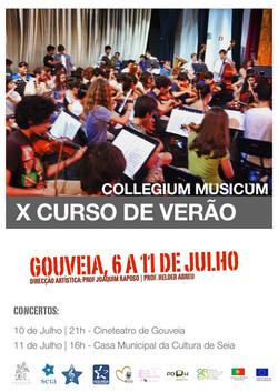 """Cartaz """"X Curso de Verão"""""""