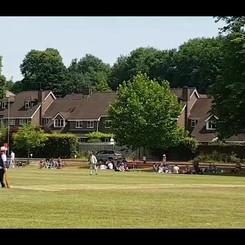 Cricket play_1.mp4