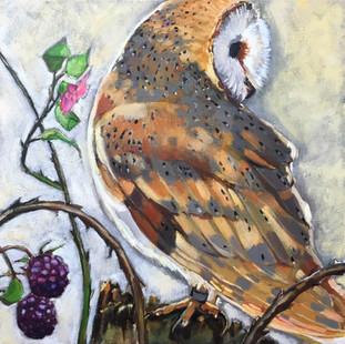 You See Me (Owl)