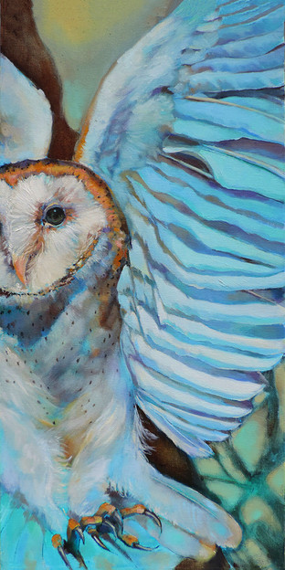 Grandmother Owl
