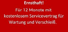E-Löwentage12Monate.png
