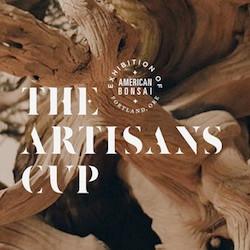 Mirai Silent Auction - Artisans Cup
