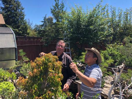 Visiting Master Boon Manakitivipart in Northern California