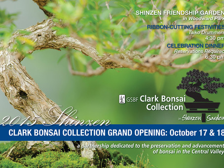 The Clark Bonsai Collection at Shinzen