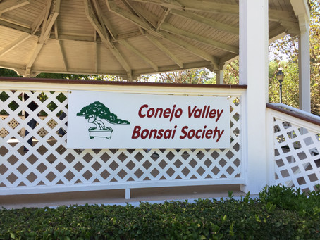 Conejo Valley Bonsai Society Show at the Garden of the Worlds