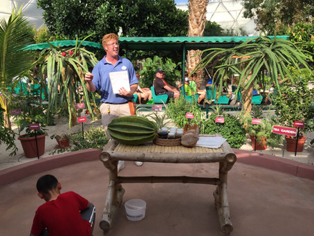 """Behind the Scenes: Epcot """"Living Land"""""""