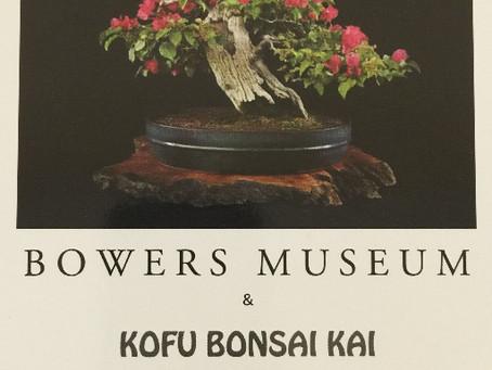 Kofu Bonsai Kai at the Bowers Museum