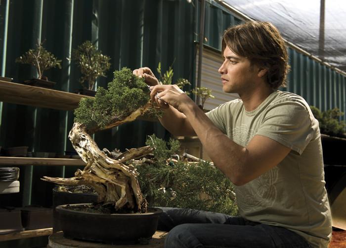 Travis-goldstein-bonsai.jpg