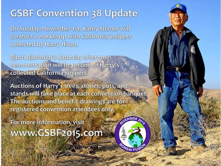 GSBF Riverside Convention this Weekend