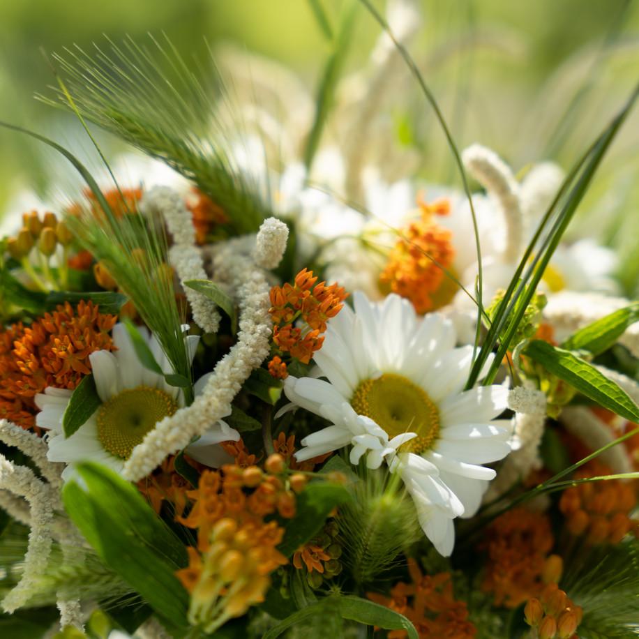 Svadobná kytica - Poľná