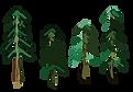 木々.png
