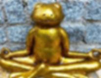 meditatie kikker_edited_edited.jpg