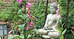 buddha (3).jpg