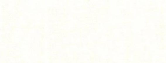 Trasera Blanca - 100% Algodon, 2.80 Ancho - 13€/m