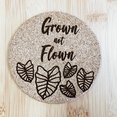 Coaster - Grown Not Flown