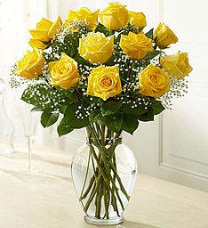 12 Beautiful Yellow Roses