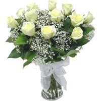 12 Beautiful White Roses