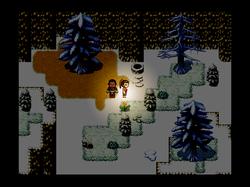 The Frozen ravine