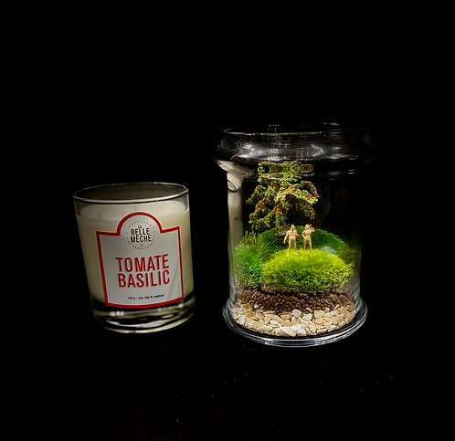 Day Maker Gift Package- (Adam and Eve & Candle.)