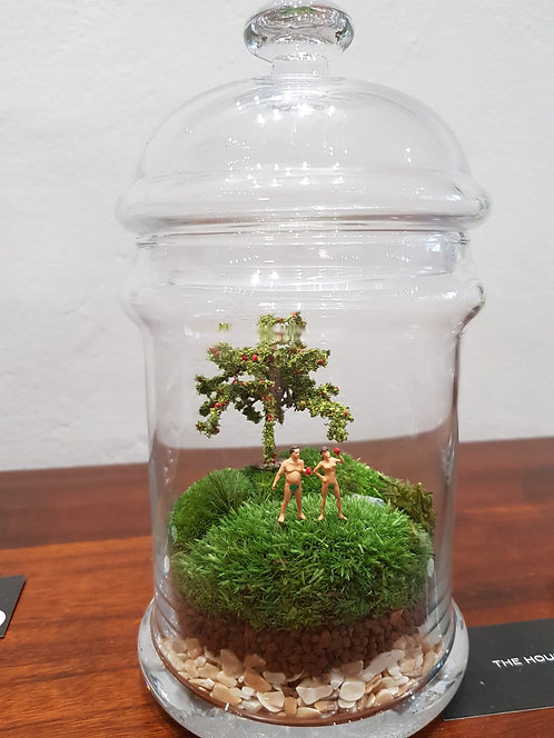Adam and Eve - TerrariumArt