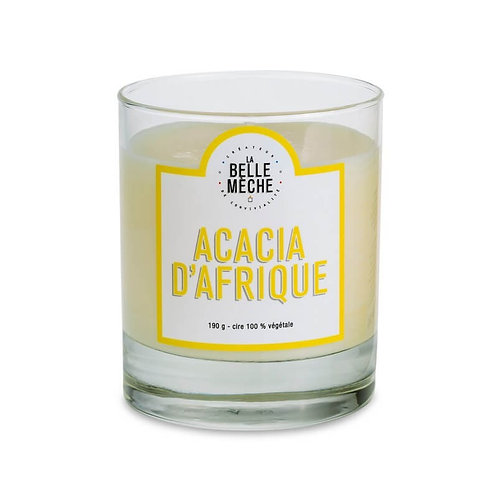 African Acacia Scented Candle - La Belle Mèche